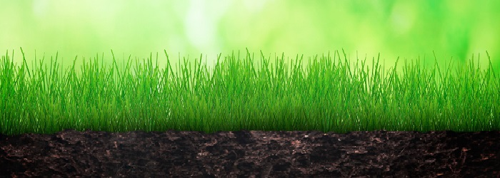 """Celebrate Earth Day """"Green"""" Your Print Environment"""