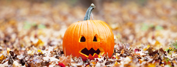 For Your Consideration: 10 Scary Paper Facts! | Hughes Office Equipment